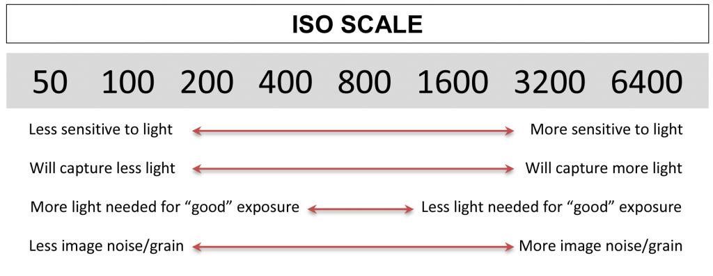 Exposure-Graphics-ISO-1024x3975