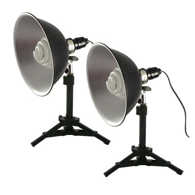 Two Tabletop Lights Set Studio Lighting
